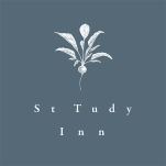 St-tudy-twitter-insta-icon-2